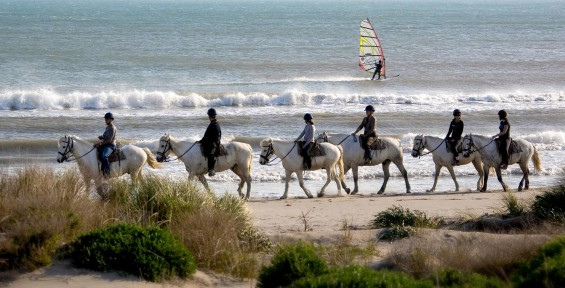 camargue-horse-riding-9-e1445434226272