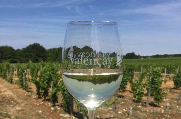 valencay-vin-759x500